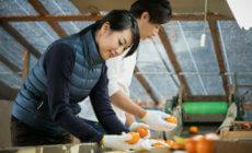 農業経営における顧問弁護士の役割と最適な契約プラン